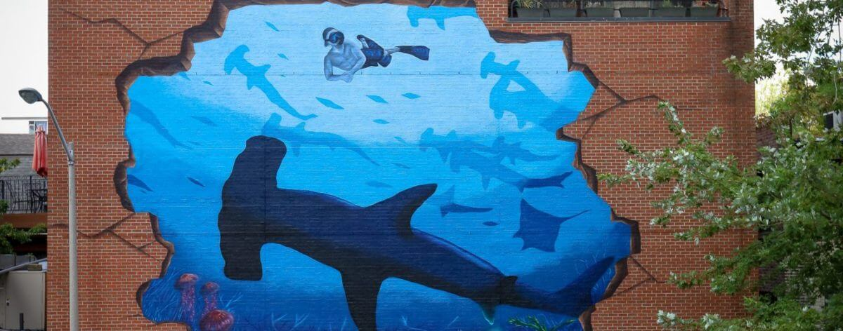 ARTivismo y océanos en Sea Walls 2018